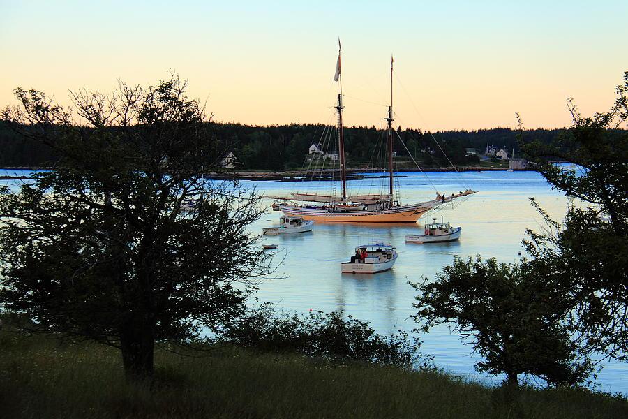 Swans Island Heritage by Doug Mills