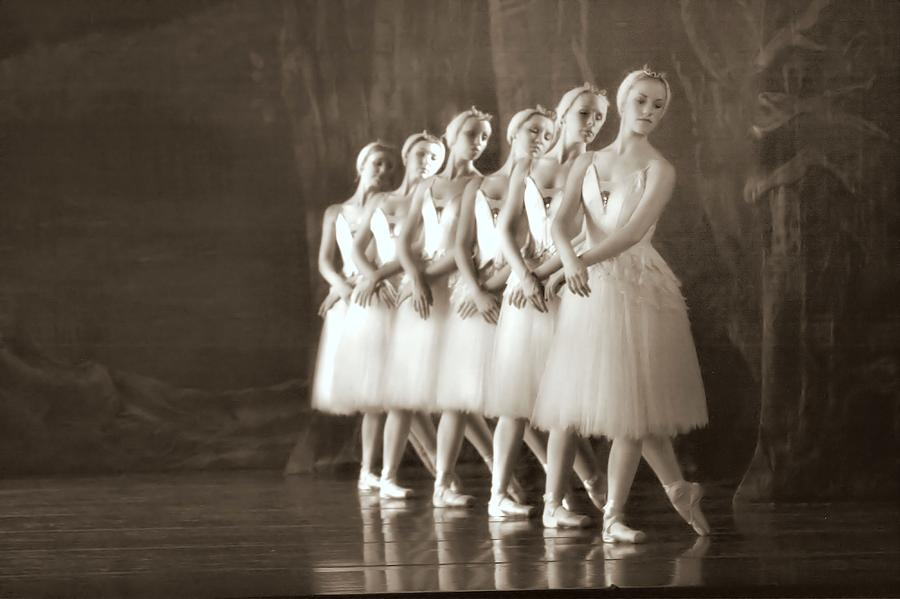 Ballet Photograph - Swans Lined Up by Kenneth Mucke
