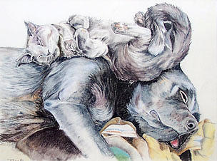 Dog Pastel - Sweet Dreams by Teresa Smith