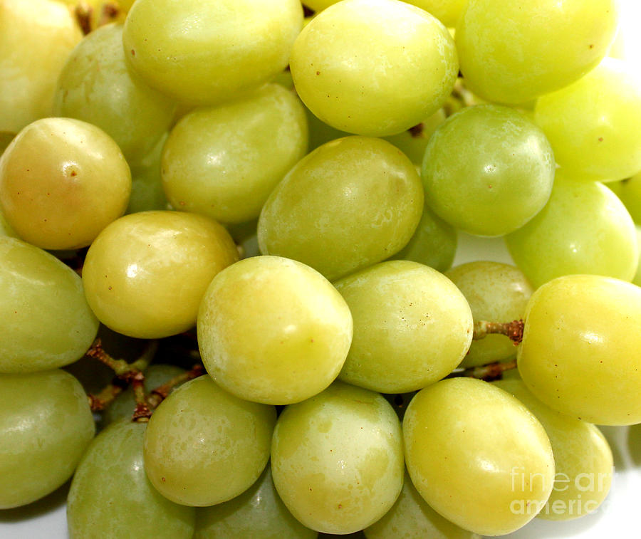 Sweet Green Grapes Photograph - Sweet Green Grapes by Barbara Griffin