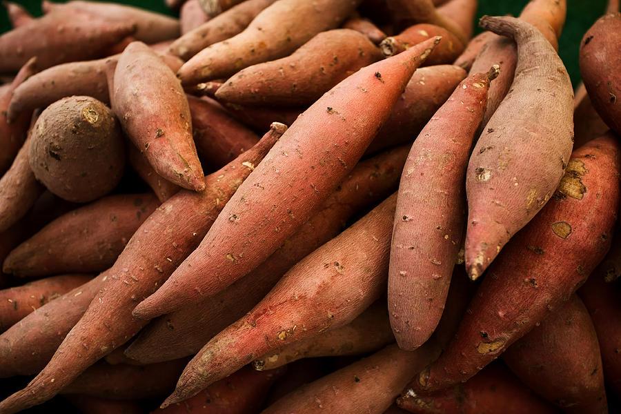 Sweet Potatoes Photograph - Sweet Potatoes by Tanya Harrison