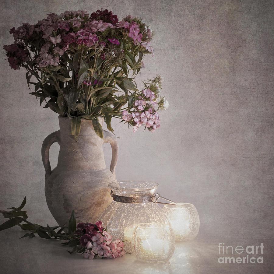Pot Photograph - Sweet Williams Vintage by Jane Rix