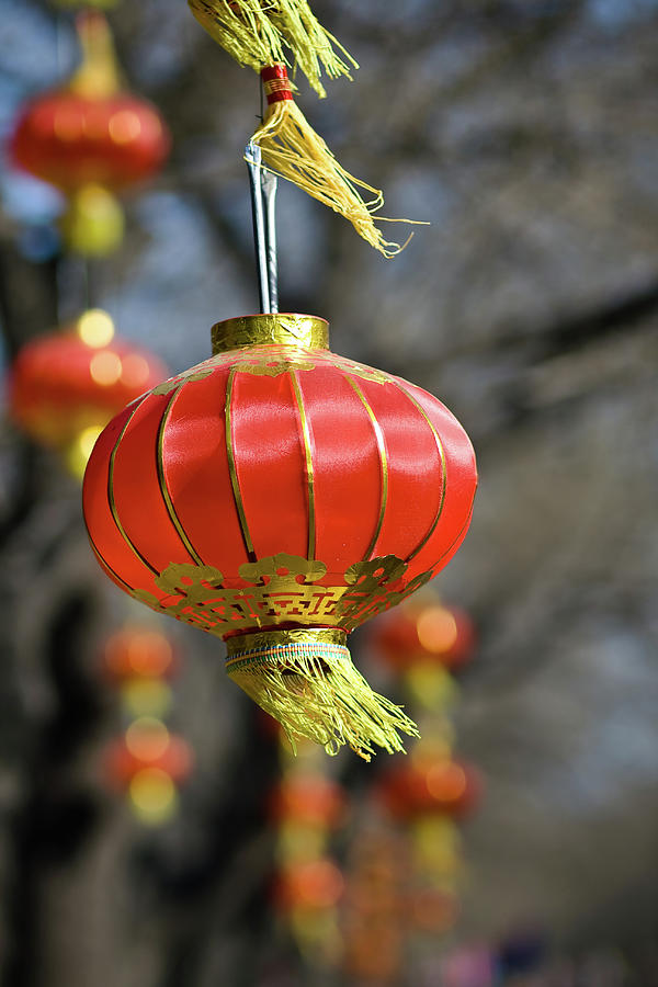 Vertical Photograph - Swinging Chinese Lanterns by Jeremy Vickers Photography