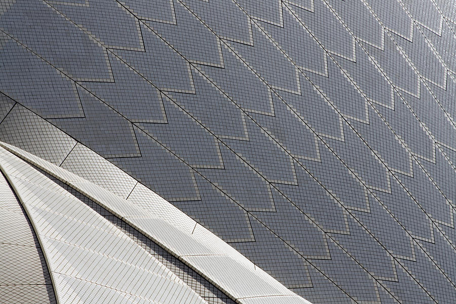 Architecture Photograph - Sydney Opera House Roof by Martin Cameron