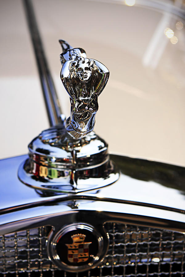 Symbol of Luxury - 2 Photograph by Alan Hausenflock