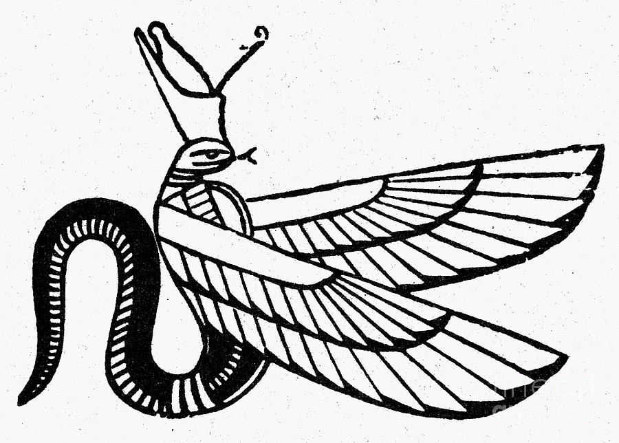 Symbol Winged Serpent Photograph By Granger