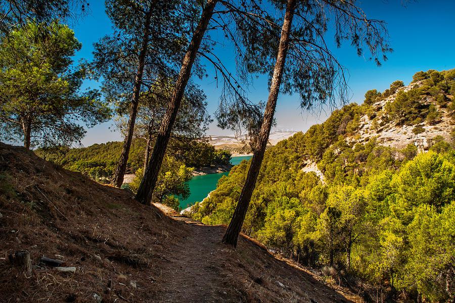 Nature Photograph - Symphony Of Nature. El Chorro. Spain by Jenny Rainbow