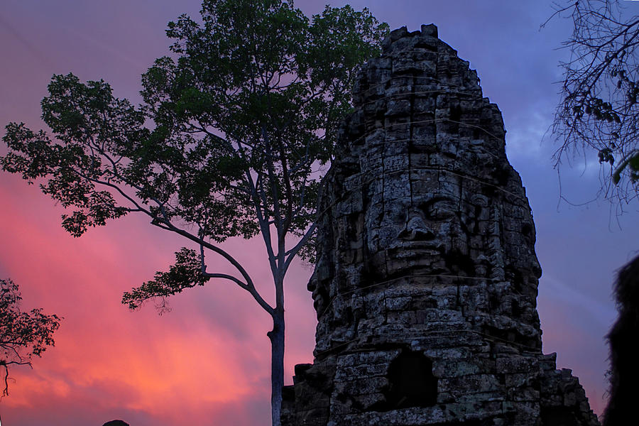 Cambodia Photograph - Ta Phrom by Dominic Guiver