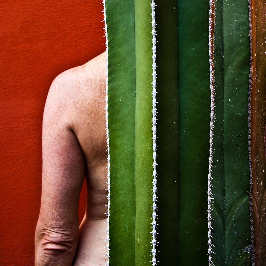 Cactus Photograph - Tactile Bodies by Kate McKenna