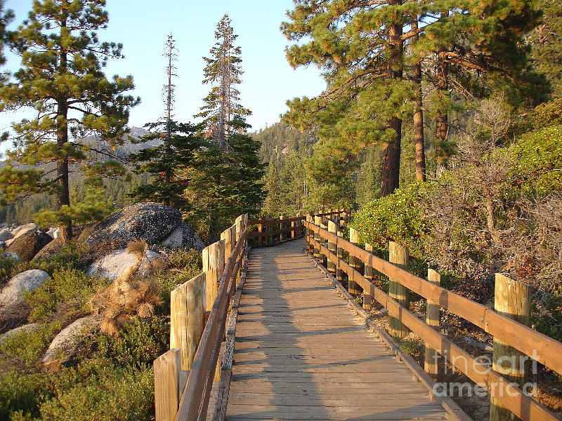 Lake Tahoe Photograph - Tahoe Bridge by Silvie Kendall