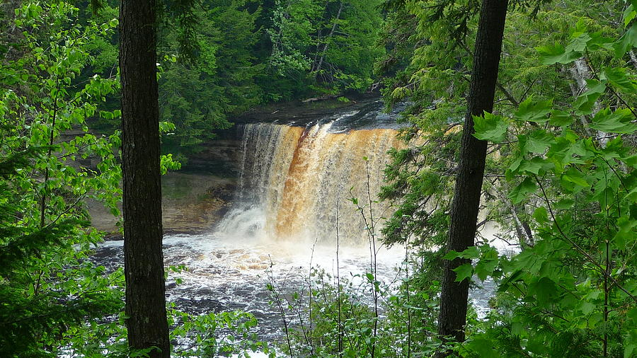 Falls Photograph - Tahquamenon Falls Of Michigan by Michael Carrothers