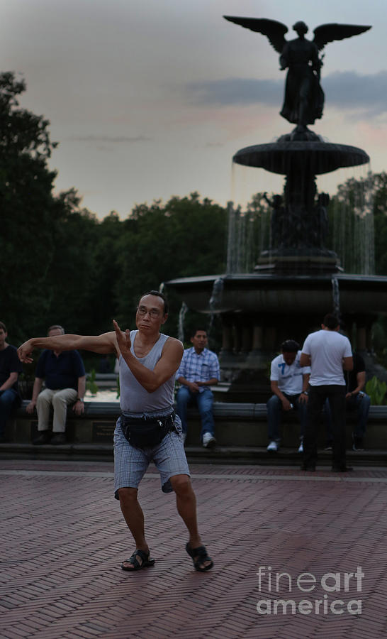 Active Photograph - Tai Chi In The Park by Lee Dos Santos