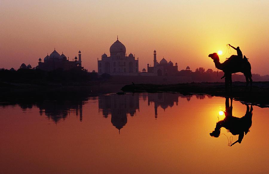 Horizontal Photograph - Taj Mahal & Silhouetted Camel & Reflection In Yamuna River At Sunset by Richard IAnson