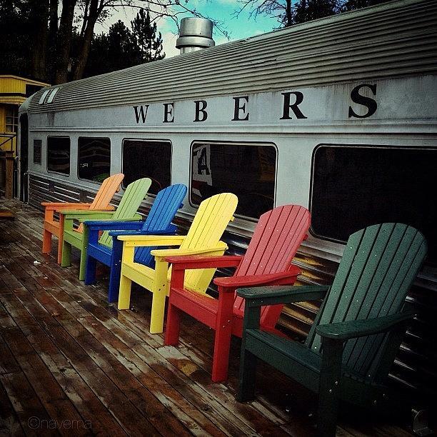 Webers Photograph - Take A Seat by Natasha Marco