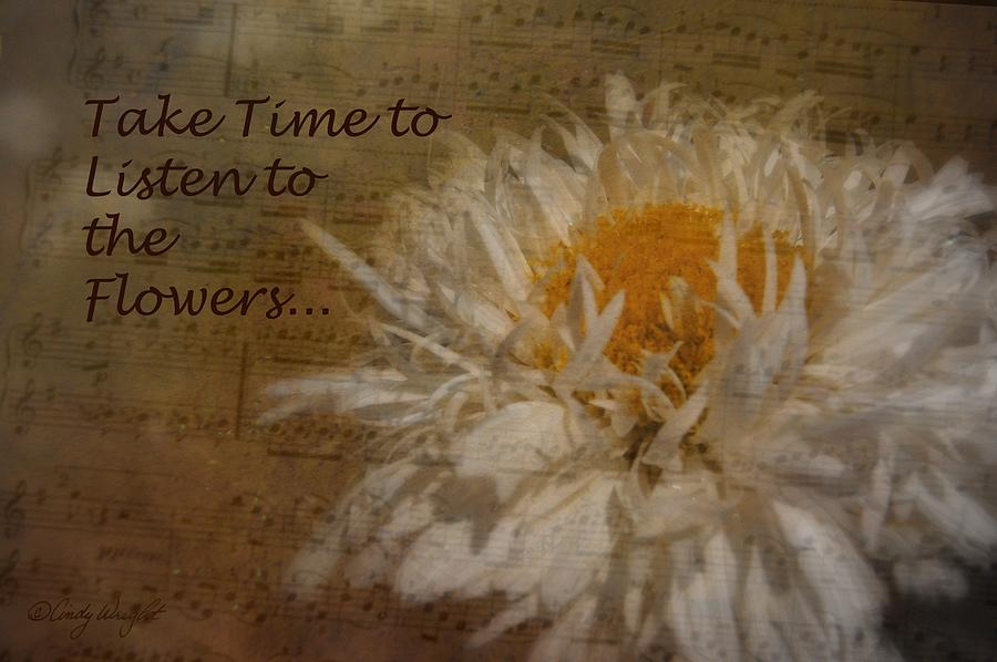Cindy Photograph - Take Time by Cindy Wright