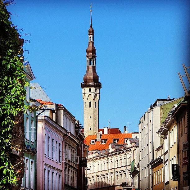 Tallinn Photograph by Luisa Azzolini