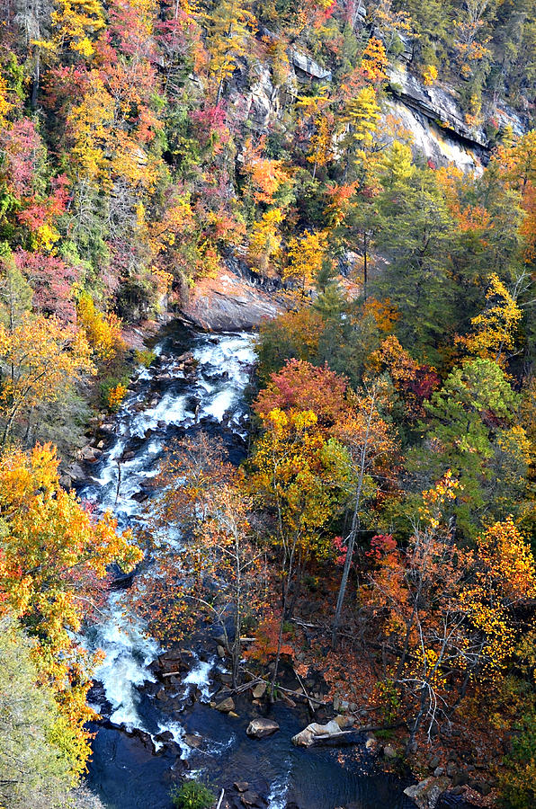 River Photograph - Tallulah River Gorge by Susan Leggett