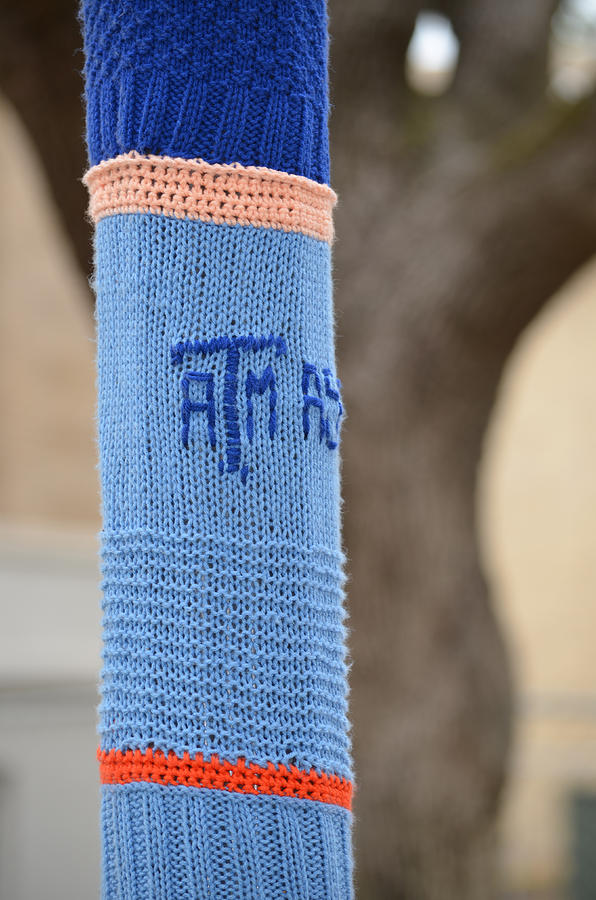Tamu Photograph - Tamu Astronomy Crocheted Lamppost by Nikki Marie Smith