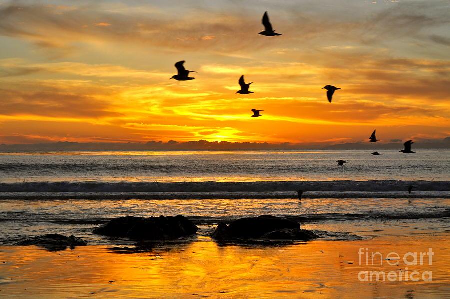 Sunset Photograph - Tangerine Dream by Johanne Peale
