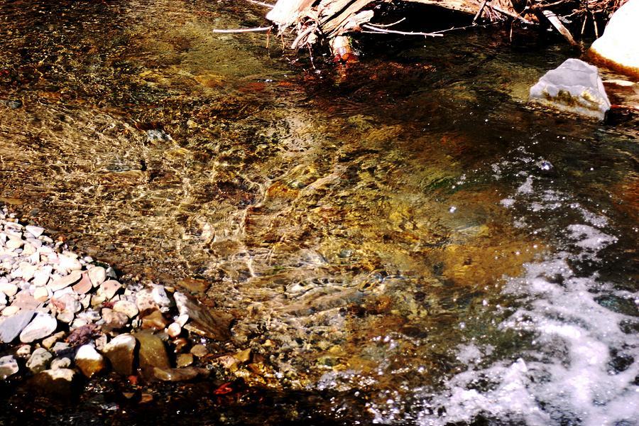 Stream Photograph - Tapestry by Virginia Pakkala