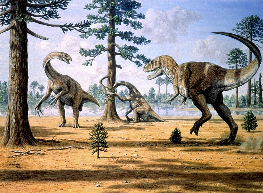 Awesome Paleoart  Tarbosaurus-mauricio-anton