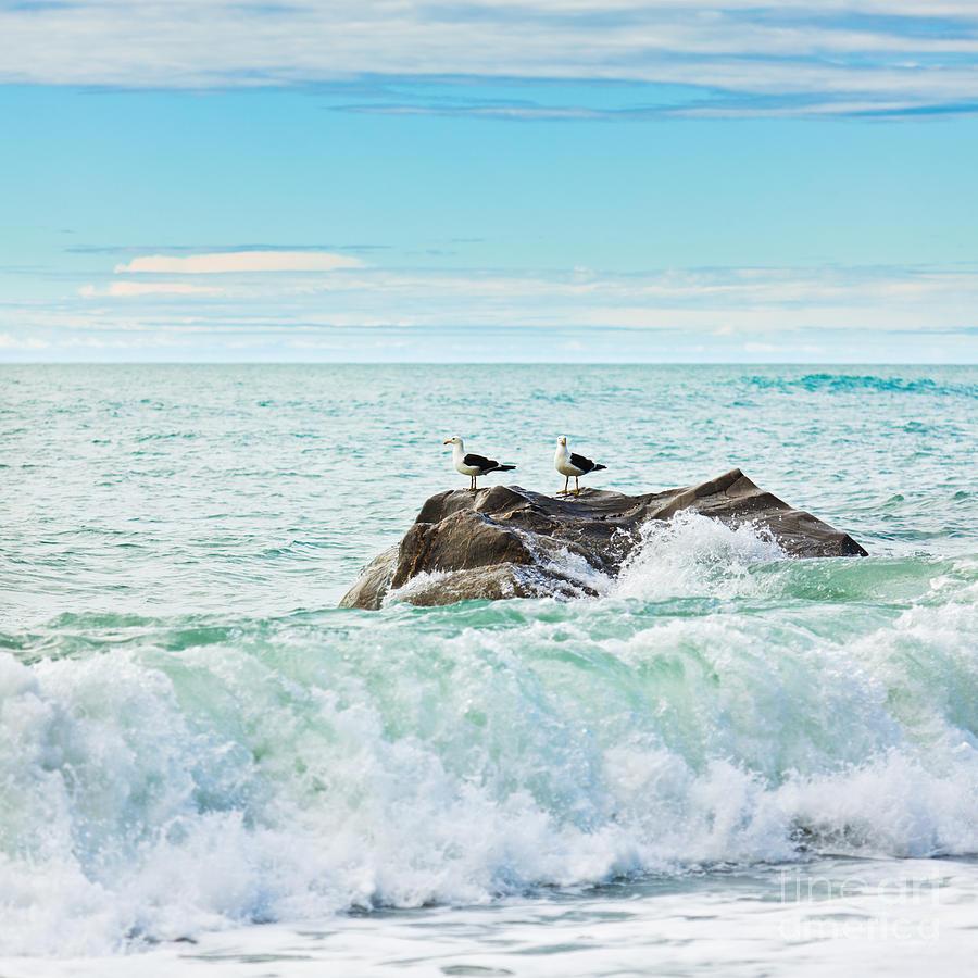 Sea Photograph - Tasman Sea by MotHaiBaPhoto Prints