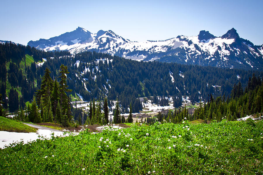 Tatoosh Range In The Cascade Mountains Photograph by David ...