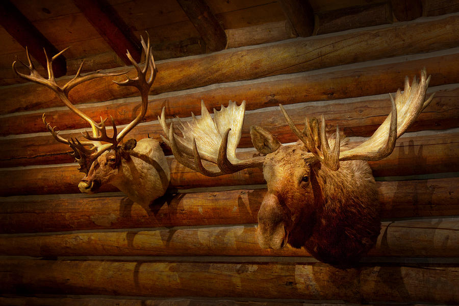Hunter Photograph - Taxidermy - The Hunting Lodge  by Mike Savad