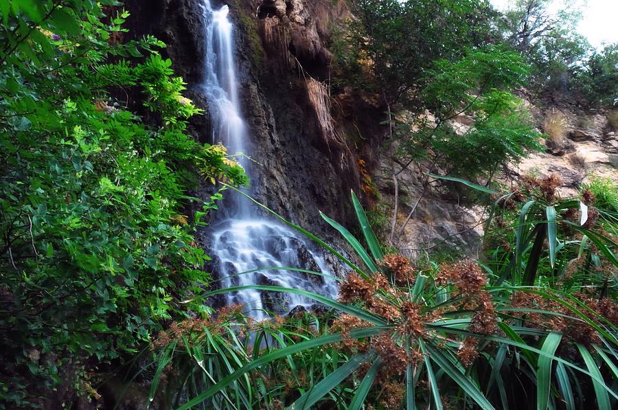 Waterfall Photograph - Tea Garden Falls by Jeremiah Nichols