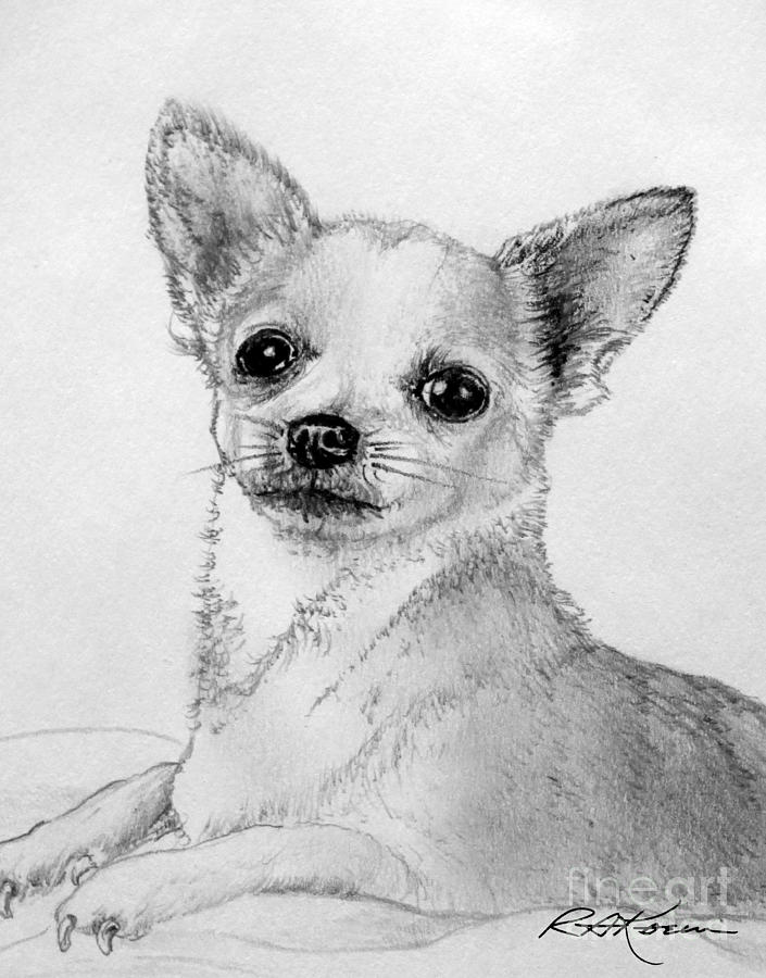 It's just a graphic of Exceptional Drawing Of Chihuahua