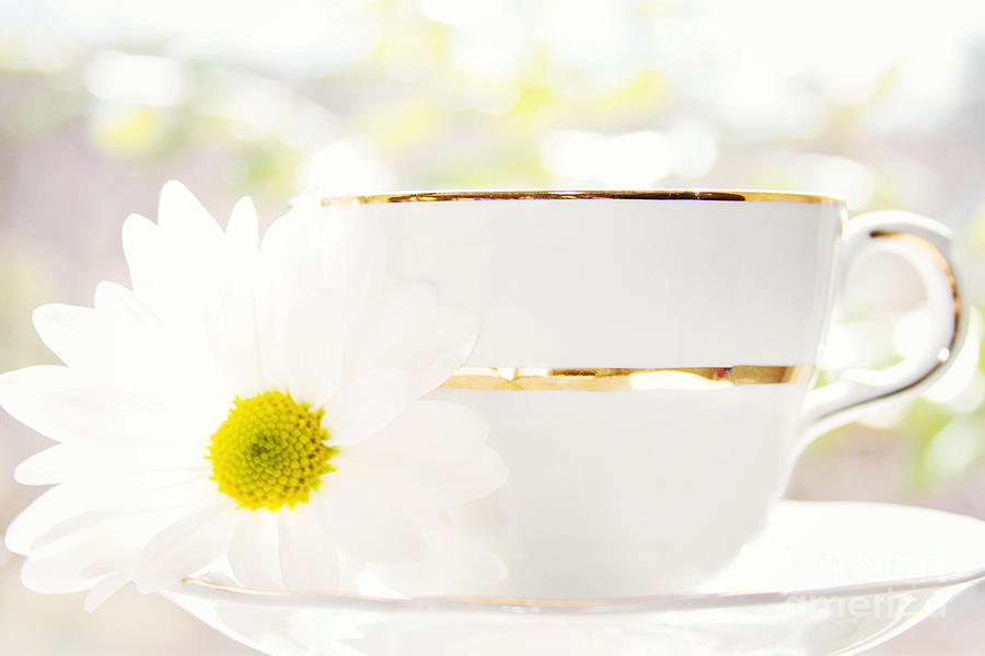 Teacup Photograph - Teacup Filled With Sunshine by Kim Fearheiley