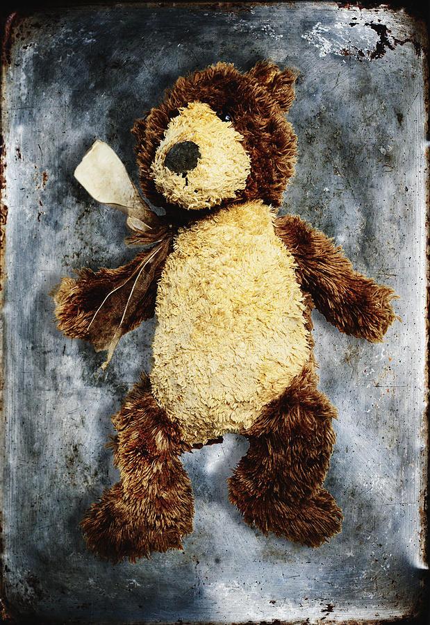 Age Photograph - Teddy Bear by Skip Nall