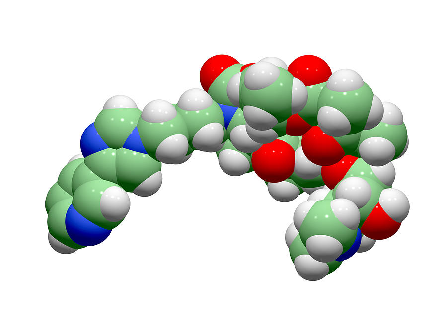 Telithromycin Photograph - Telithromycin Antibiotic Molecule by Dr Tim Evans