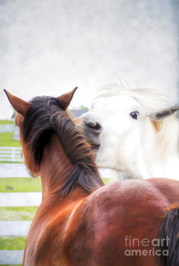 Animal Photograph - Telling Secrets by Darren Fisher