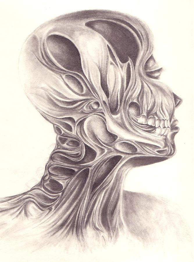 Graphite Drawing - Temporal by Arika Gloud