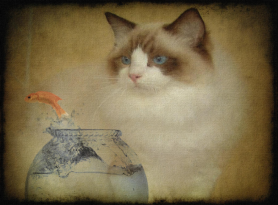 Cat Digital Art - Temptation by Marie  Gale