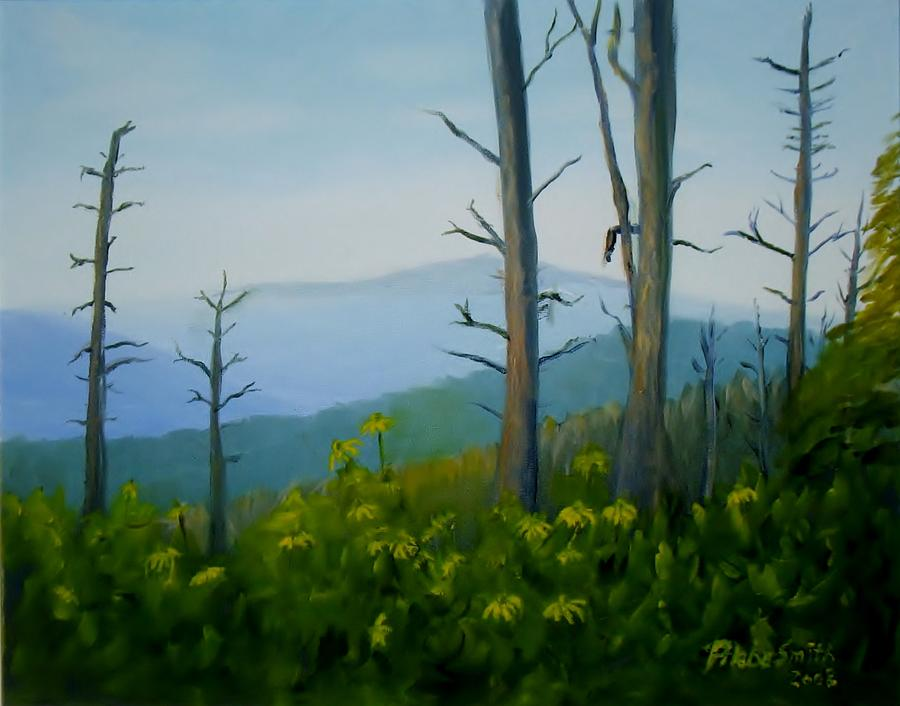 Tennessee Painting - Tennessee Mts. by Phebe Smith
