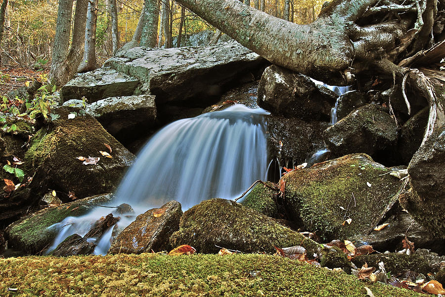 Autumn Photograph - Tennessee Waterfall 5962 by Michael Peychich