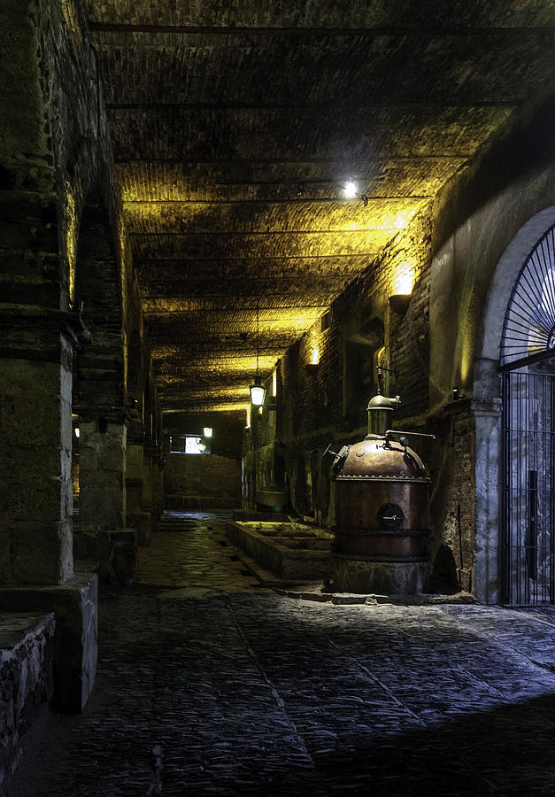 Tequila Photograph - Tequilera No. 2 by Lynn Palmer