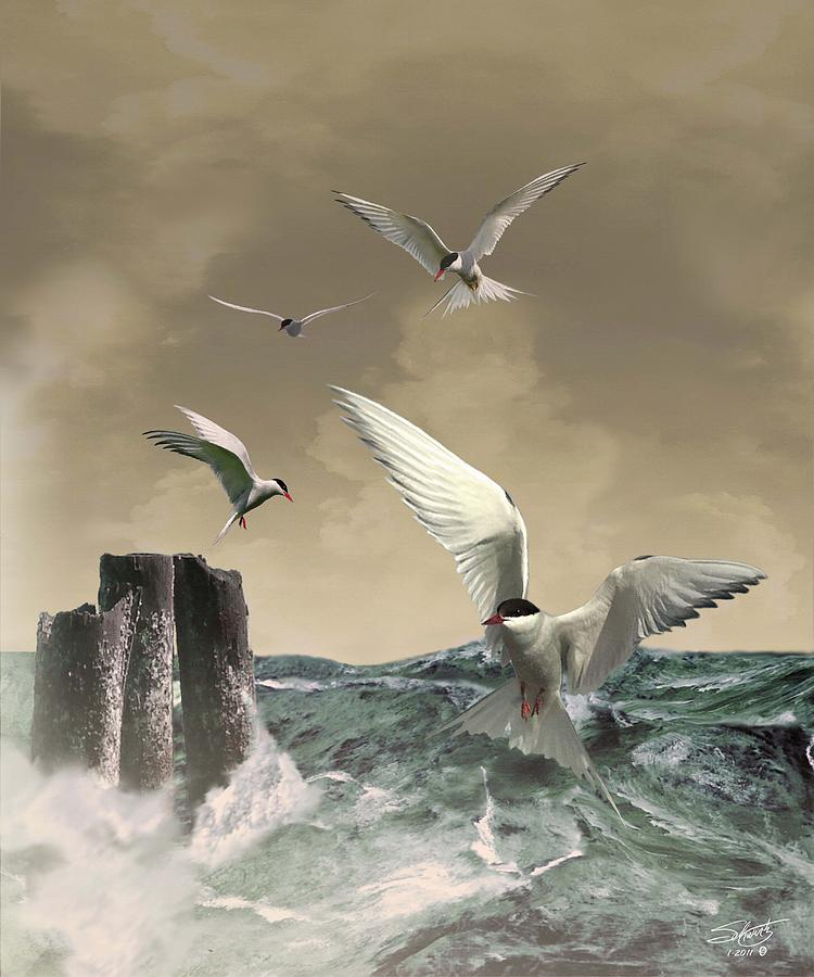 Seabirds Painting - Terns In The Wind by M Spadecaller