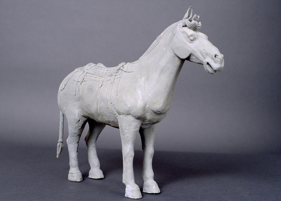 Terracotta Army Photograph - Terracotta Horse by Shaun Higson