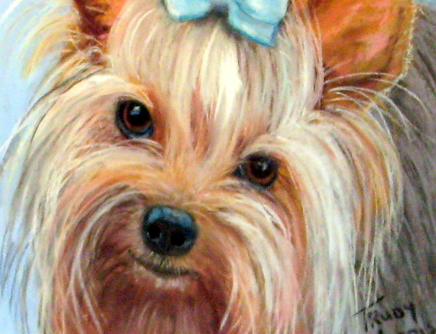 Yorkshire Terrier Painting - Tessa by Trudy Morris