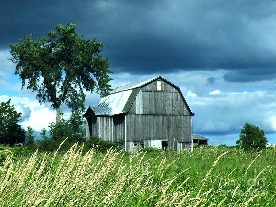 Barn Photograph - Test Of Time by Joe Jake Pratt