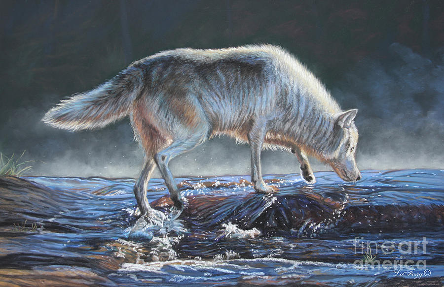 Timber Wolf Painting - Testing The Waters by Deb LaFogg-Docherty