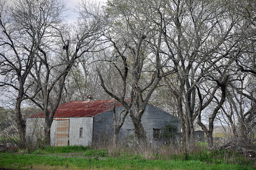 Blanton Photograph - Texas Barn by Teresa Blanton