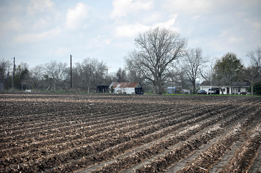 Blanton Photograph - Texas Farmland by Teresa Blanton