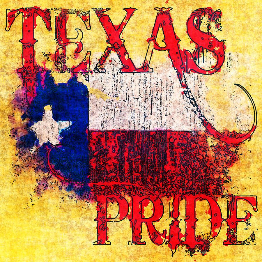Texas Pride Photograph By David G Paul