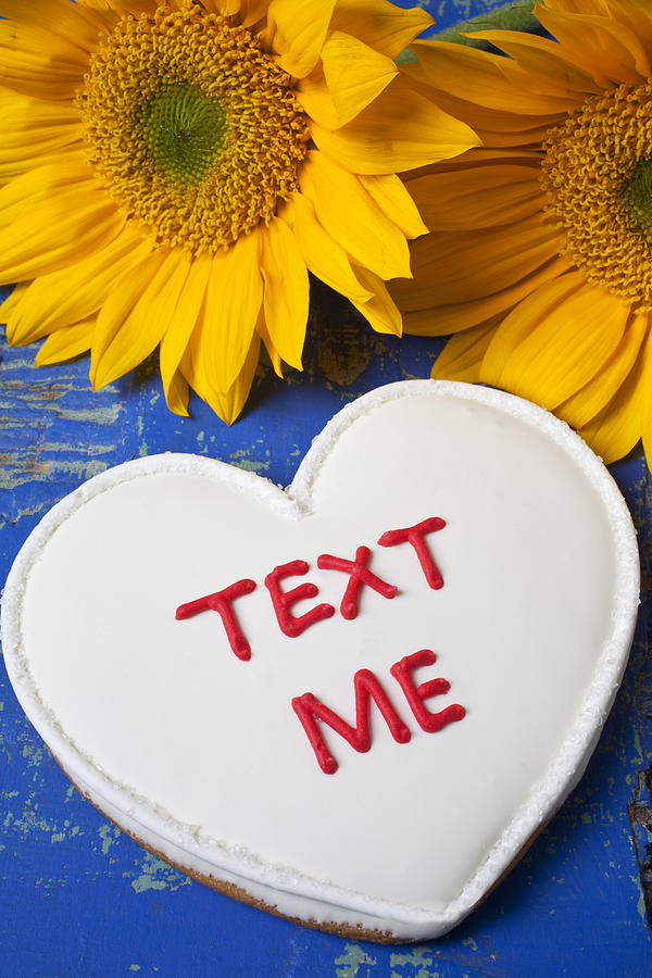 Text Me Photograph - Text Me by Garry Gay