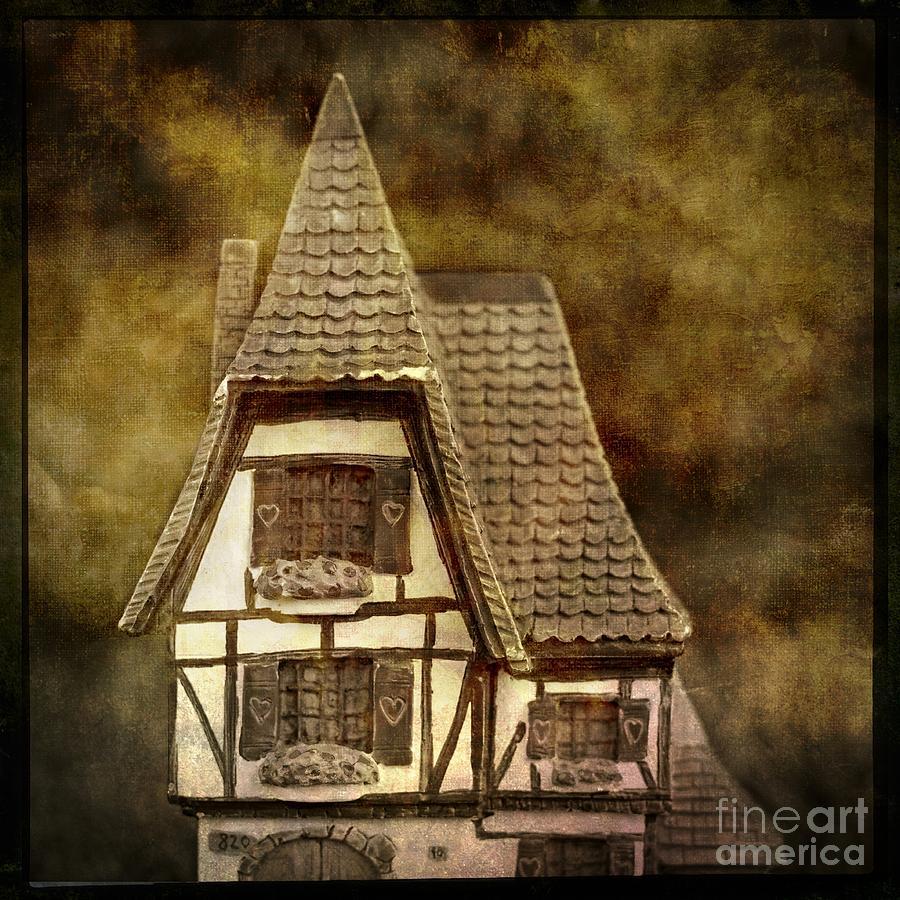 Alsace Photograph - Textured House by Bernard Jaubert