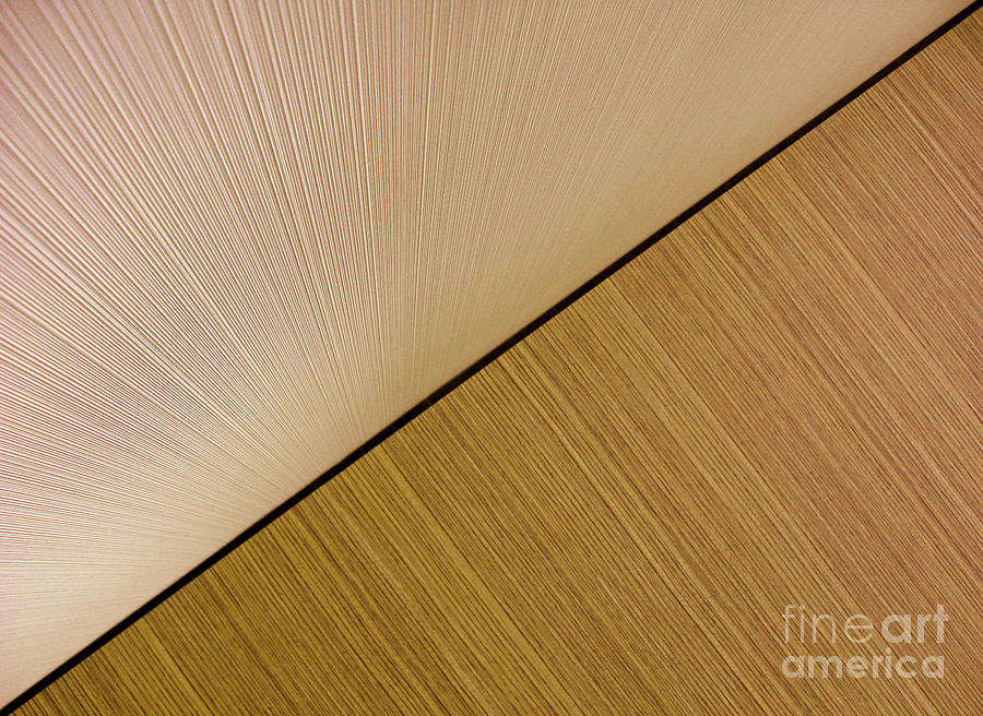 Abstract Photograph - Textures. Beige. by Ausra Huntington nee Paulauskaite
